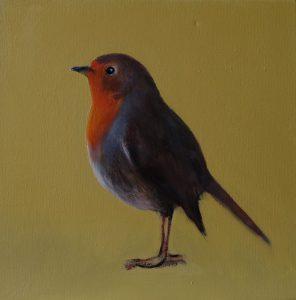 Robin III 20x20 oil n canvas
