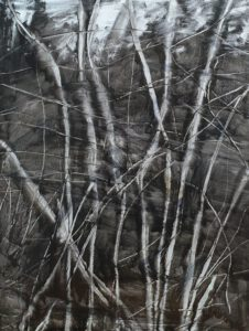Dark Forest oil on canvas 60 x 80 cm
